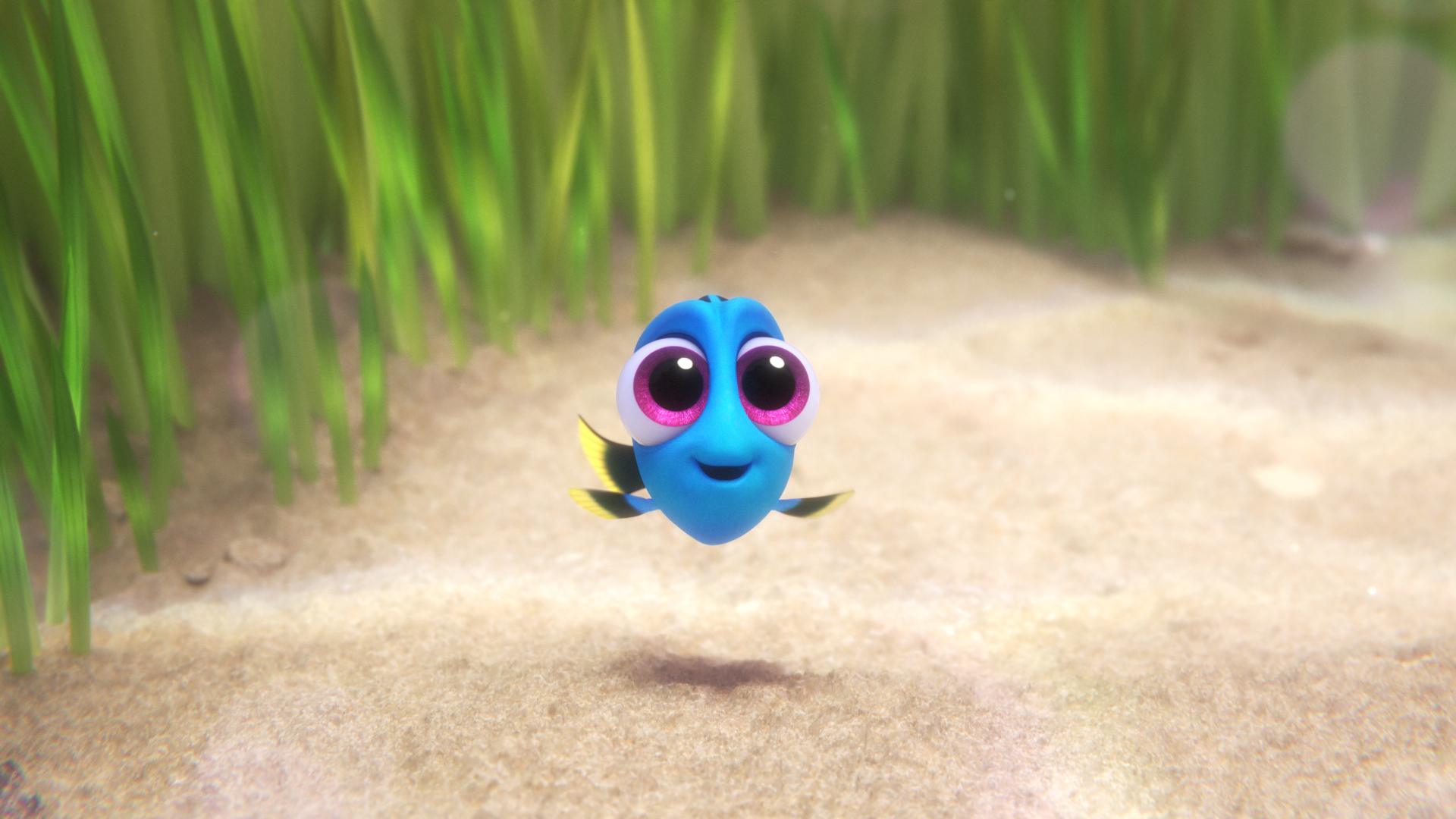 FINDING DORY – Pictured: Dory. ©2016 Disney•Pixar. All Rights Reserved.